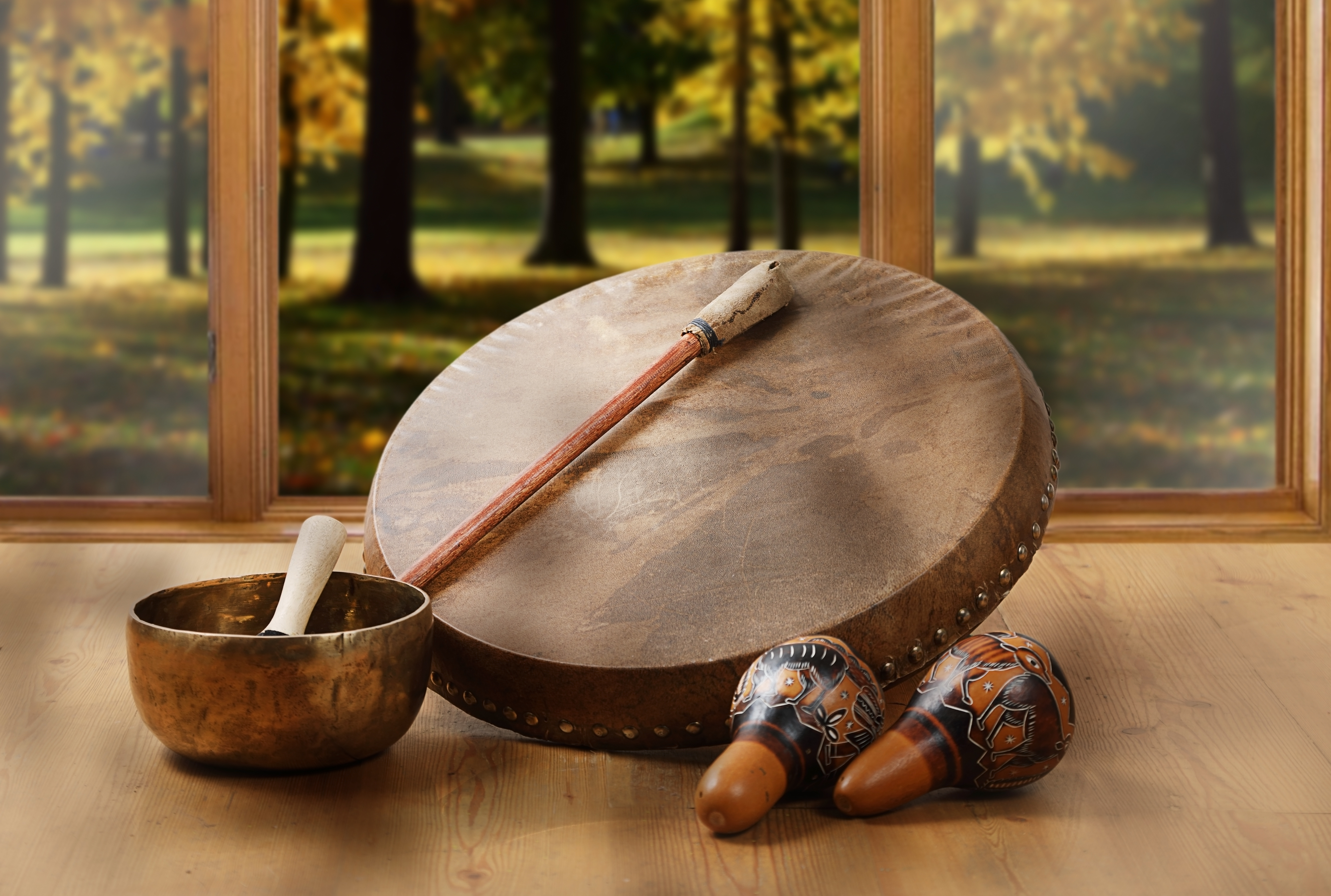 A still life of the shamanic drum, Tibetan singing bowls and maracas on a background of forest.