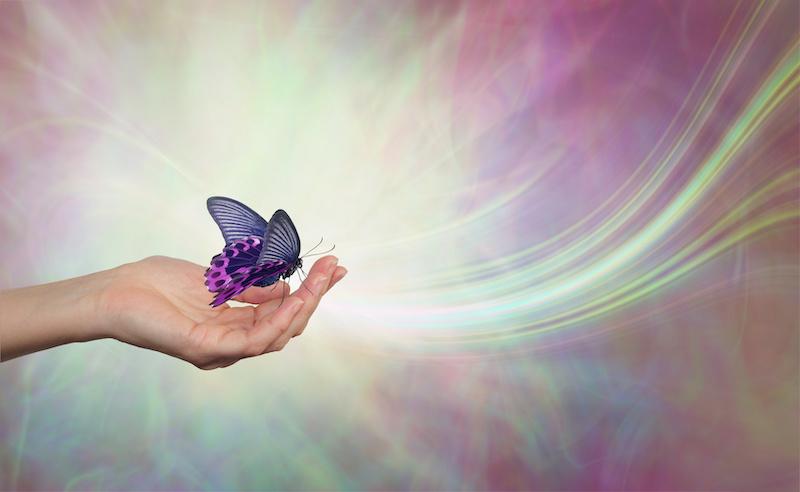 Transcendence_Transformation_small